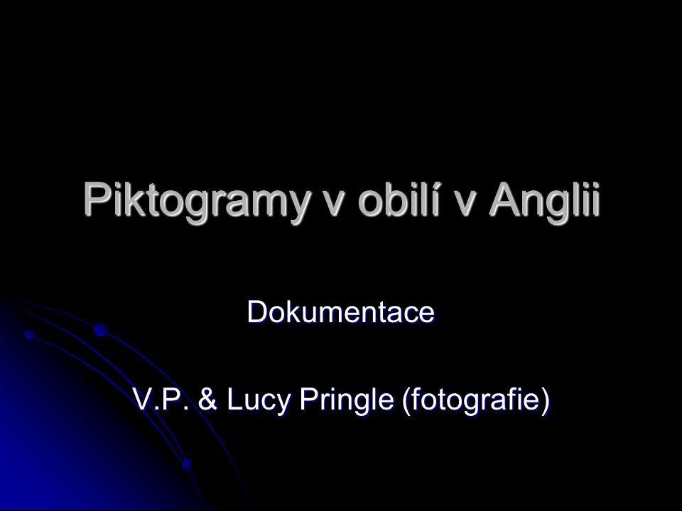 Piktogramy v obilí v Anglii Dokumentace V.P. & Lucy Pringle (fotografie)
