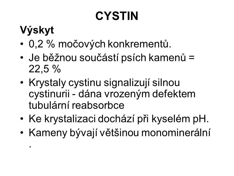 CYSTIN Výskyt 0,2 % močových konkrementů. Je běžnou součástí psích kamenů = 22,5 % Krystaly cystinu signalizují silnou cystinurii - dána vrozeným defe