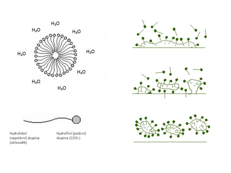 Hydrofilní (polární) skupina (COO-) Hydrofobní (nepolární) skupina (uhlovodík)