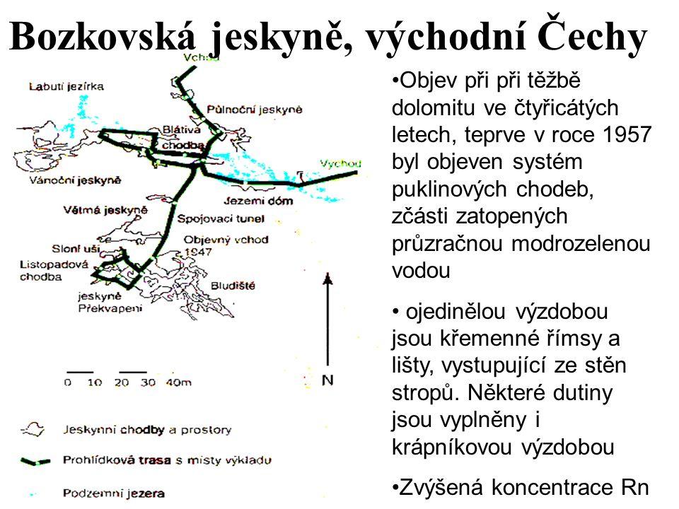 Bozkovská jeskyně, východní Čechy Objev při při těžbě dolomitu ve čtyřicátých letech, teprve v roce 1957 byl objeven systém puklinových chodeb, zčásti