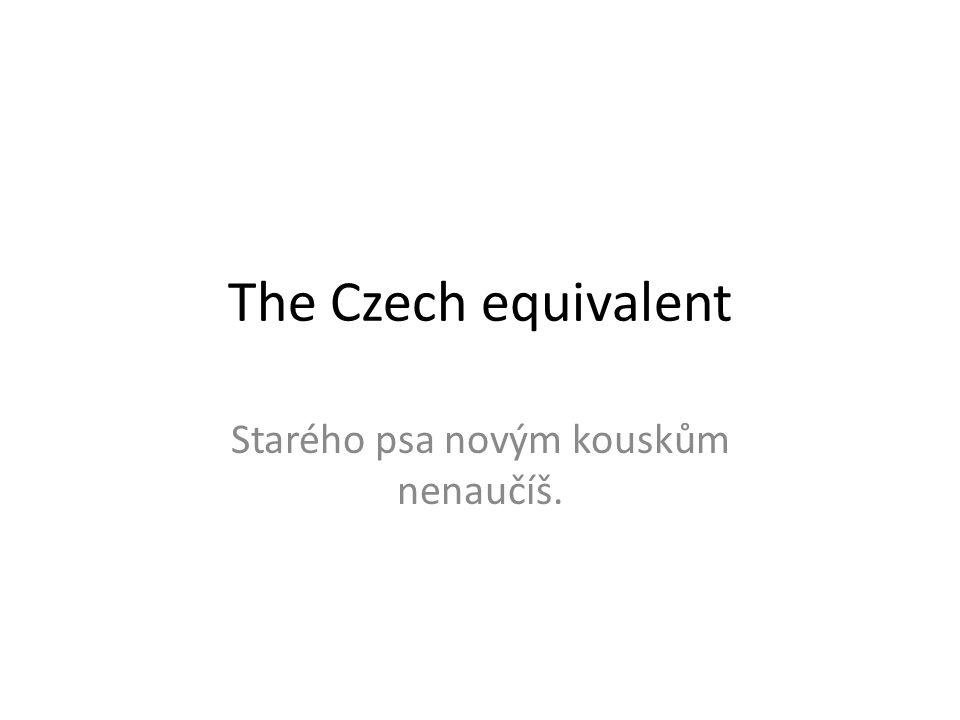 The Czech equivalent Starého psa novým kouskům nenaučíš.