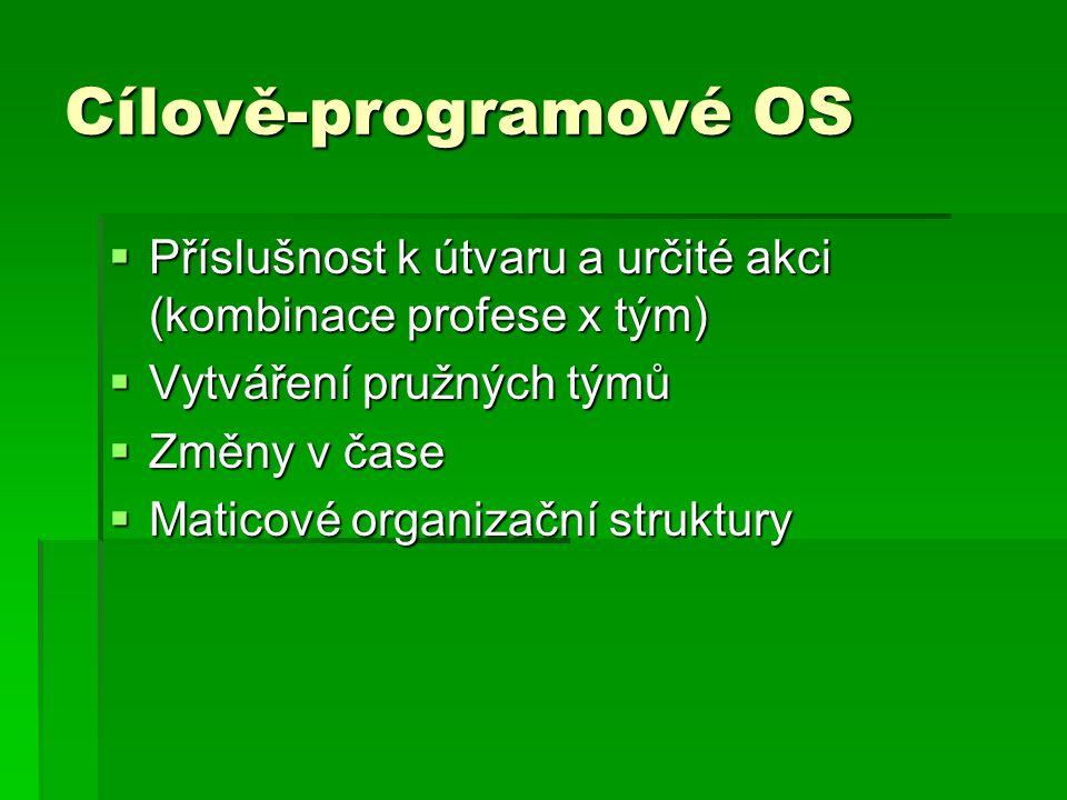 Cílově-programové OS  Příslušnost k útvaru a určité akci (kombinace profese x tým)  Vytváření pružných týmů  Změny v čase  Maticové organizační st