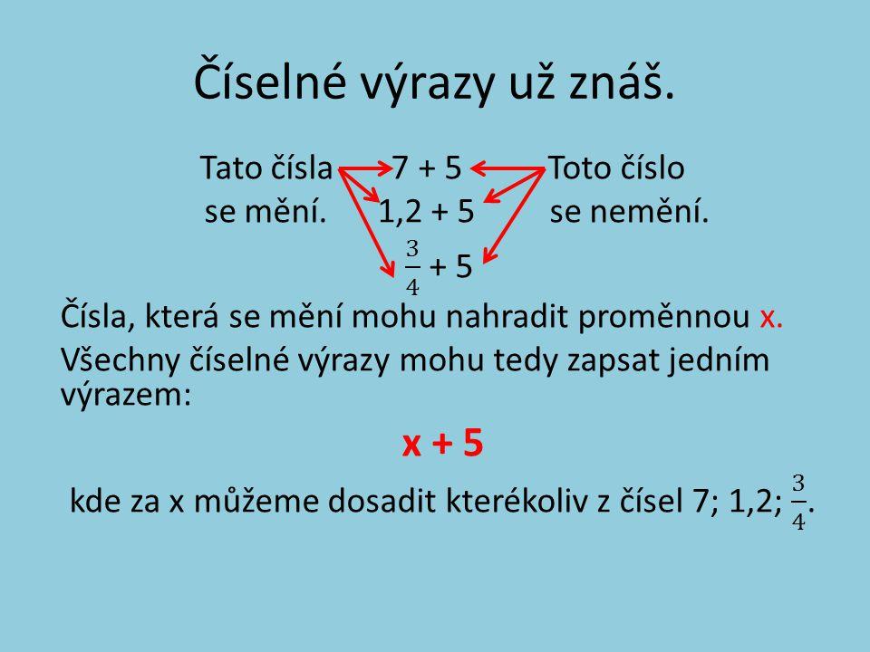 Proměnná je znak, nejčastěji písmeno (např. x, y, z) zastupující různá čísla.