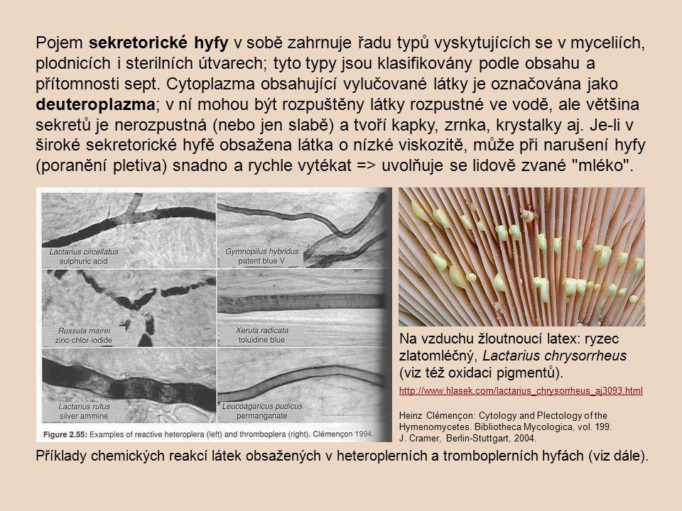 Pojem sekretorické hyfy v sobě zahrnuje řadu typů vyskytujících se v myceliích, plodnicích i sterilních útvarech; tyto typy jsou klasifikovány podle obsahu a přítomnosti sept.