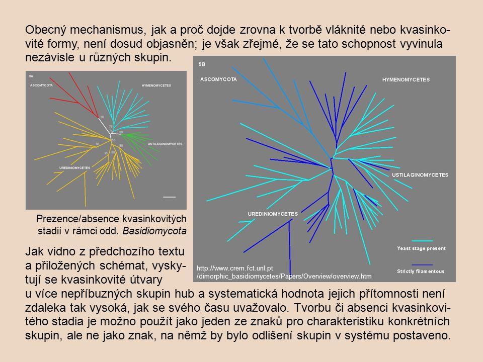 Obecný mechanismus, jak a proč dojde zrovna k tvorbě vláknité nebo kvasinko- vité formy, není dosud objasněn; je však zřejmé, že se tato schopnost vyv