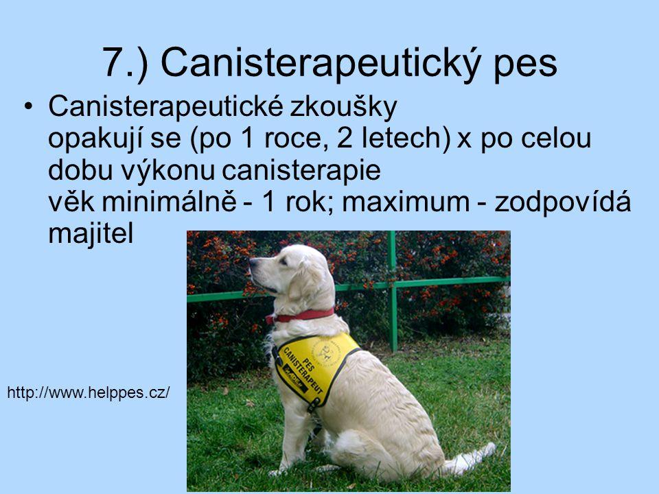 7.) Canisterapeutický pes Canisterapeutické zkoušky opakují se (po 1 roce, 2 letech) x po celou dobu výkonu canisterapie věk minimálně - 1 rok; maximu