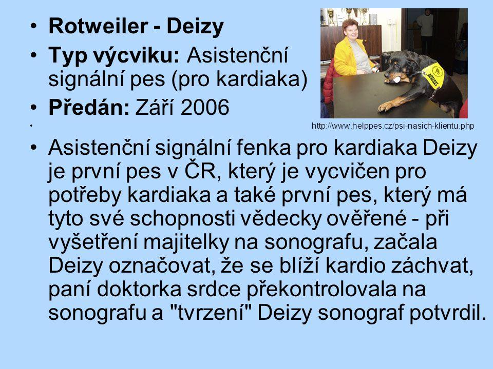 Rotweiler - Deizy Typ výcviku: Asistenční signální pes (pro kardiaka) Předán: Září 2006 http://www.helppes.cz/psi-nasich-klientu.php Asistenční signál