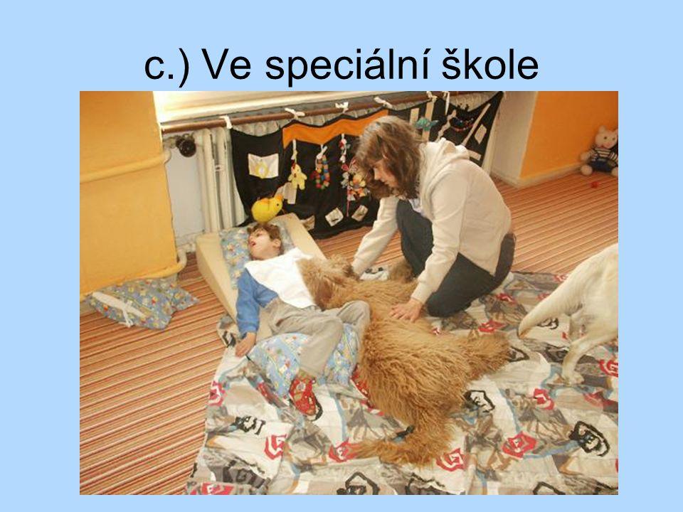 7.) Canisterapeutický pes Canisterapeutické zkoušky opakují se (po 1 roce, 2 letech) x po celou dobu výkonu canisterapie věk minimálně - 1 rok; maximum - zodpovídá majitel http://www.helppes.cz/