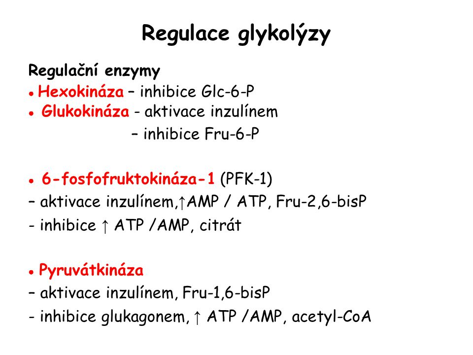 Regulace glykolýzy Regulační enzymy ● Hexokináza – inhibice Glc-6-P ● Glukokináza - aktivace inzulínem – inhibice Fru-6-P ● 6-fosfofruktokináza-1 (PFK-1) – aktivace inzulínem, ↑ AMP / ATP, Fru-2,6-bisP - inhibice ↑ ATP /AMP, citrát ● Pyruvátkináza – aktivace inzulínem, Fru-1,6-bisP - inhibice glukagonem, ↑ ATP /AMP, acetyl-CoA