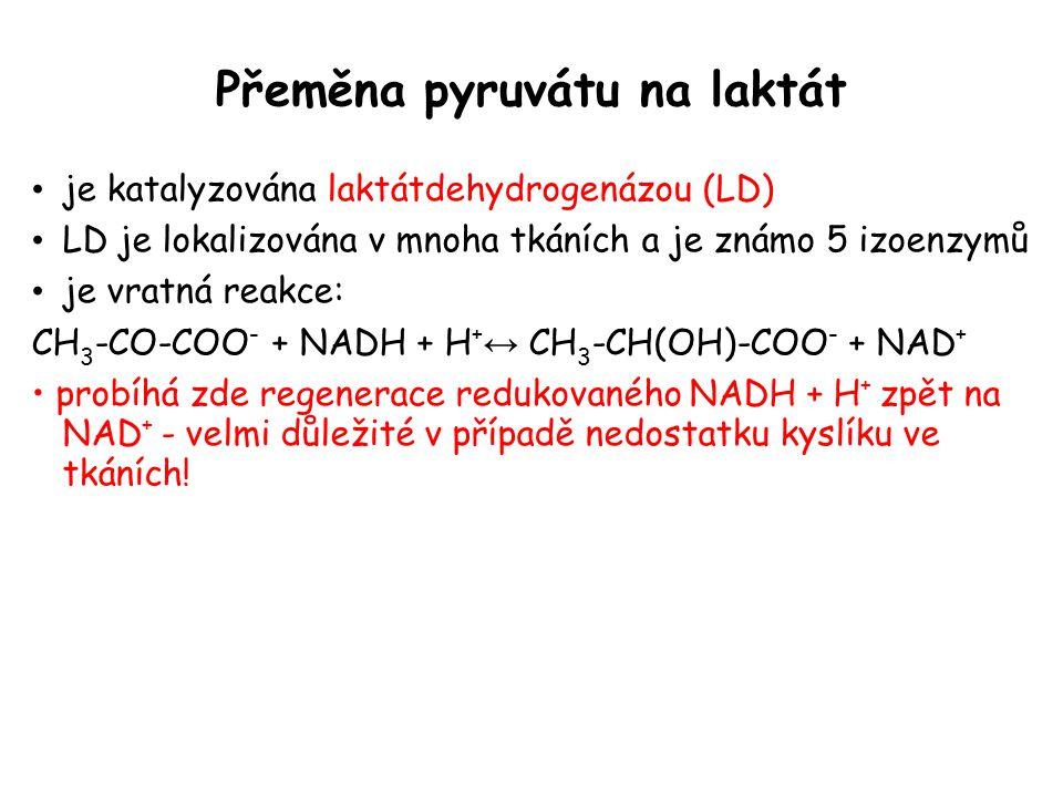 Přeměna pyruvátu na laktát je katalyzována laktátdehydrogenázou (LD) LD je lokalizována v mnoha tkáních a je známo 5 izoenzymů je vratná reakce: CH 3 -CO-COO - + NADH + H + ↔ CH 3 -CH(OH)-COO - + NAD + probíhá zde regenerace redukovaného NADH + H + zpět na NAD + - velmi důležité v případě nedostatku kyslíku ve tkáních!