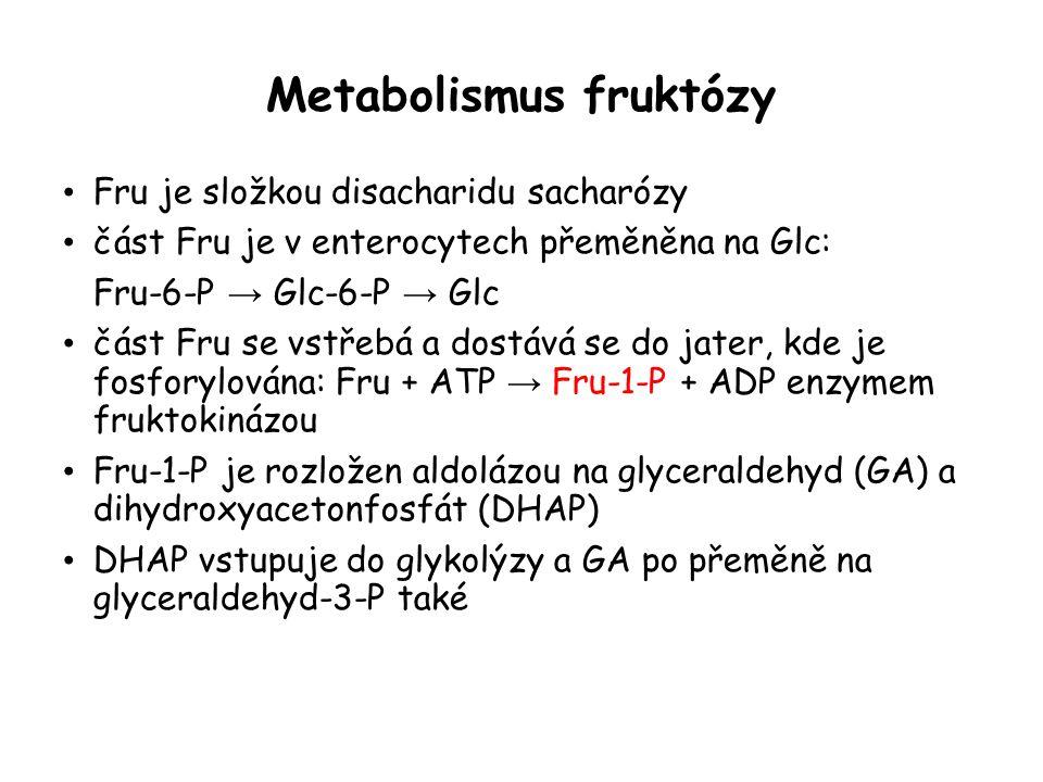 Metabolismus fruktózy Fru je složkou disacharidu sacharózy část Fru je v enterocytech přeměněna na Glc: Fru-6-P → Glc-6-P → Glc část Fru se vstřebá a dostává se do jater, kde je fosforylována: Fru + ATP → Fru-1-P + ADP enzymem fruktokinázou Fru-1-P je rozložen aldolázou na glyceraldehyd (GA) a dihydroxyacetonfosfát (DHAP) DHAP vstupuje do glykolýzy a GA po přeměně na glyceraldehyd-3-P také
