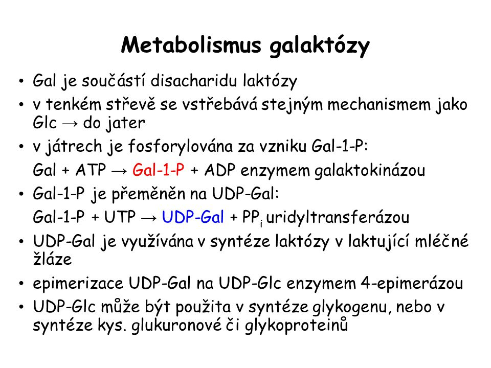 Metabolismus galaktózy Gal je součástí disacharidu laktózy v tenkém střevě se vstřebává stejným mechanismem jako Glc → do jater v játrech je fosforylována za vzniku Gal-1-P: Gal + ATP → Gal-1-P + ADP enzymem galaktokinázou Gal-1-P je přeměněn na UDP-Gal: Gal-1-P + UTP → UDP-Gal + PP i uridyltransferázou UDP-Gal je využívána v syntéze laktózy v laktující mléčné žláze epimerizace UDP-Gal na UDP-Glc enzymem 4-epimerázou UDP-Glc může být použita v syntéze glykogenu, nebo v syntéze kys.