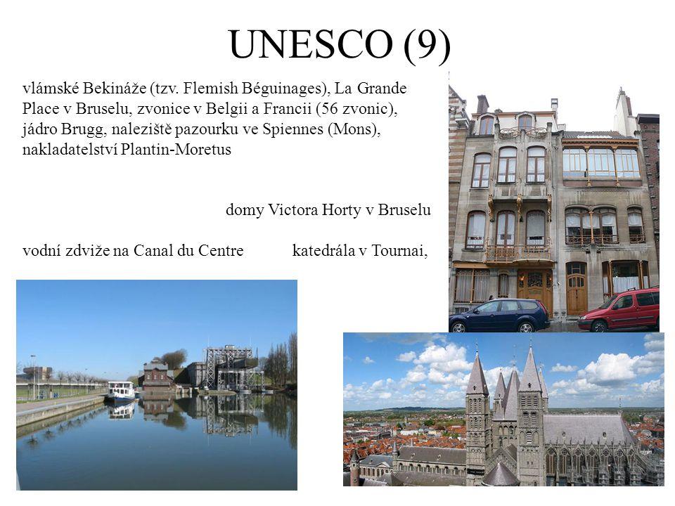 UNESCO (9) vlámské Bekináže (tzv.
