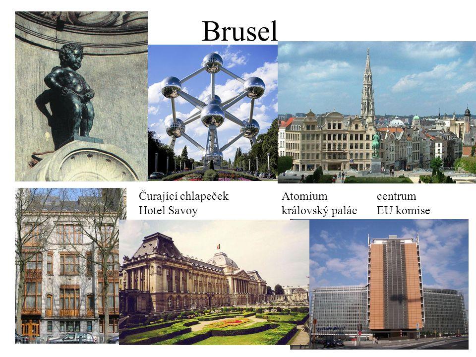 Brusel Čurající chlapečekAtomiumcentrum Hotel Savoykrálovský palácEU komise