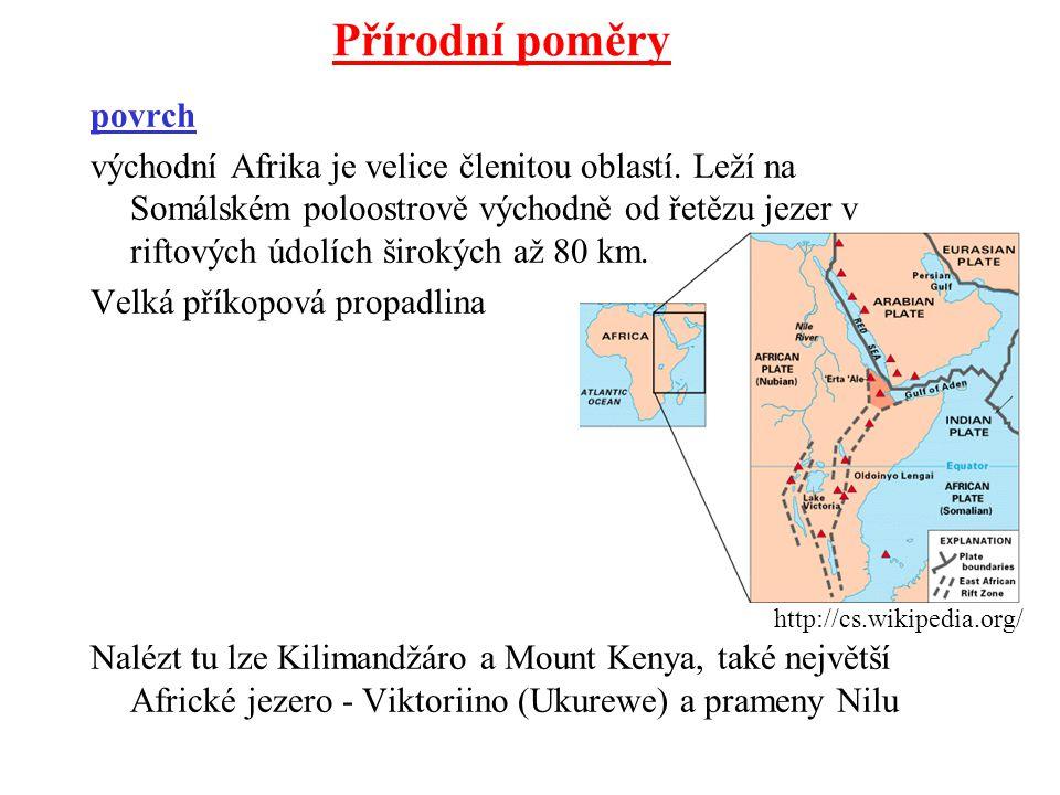 povrch východní Afrika je velice členitou oblastí. Leží na Somálském poloostrově východně od řetězu jezer v riftových údolích širokých až 80 km. Velká
