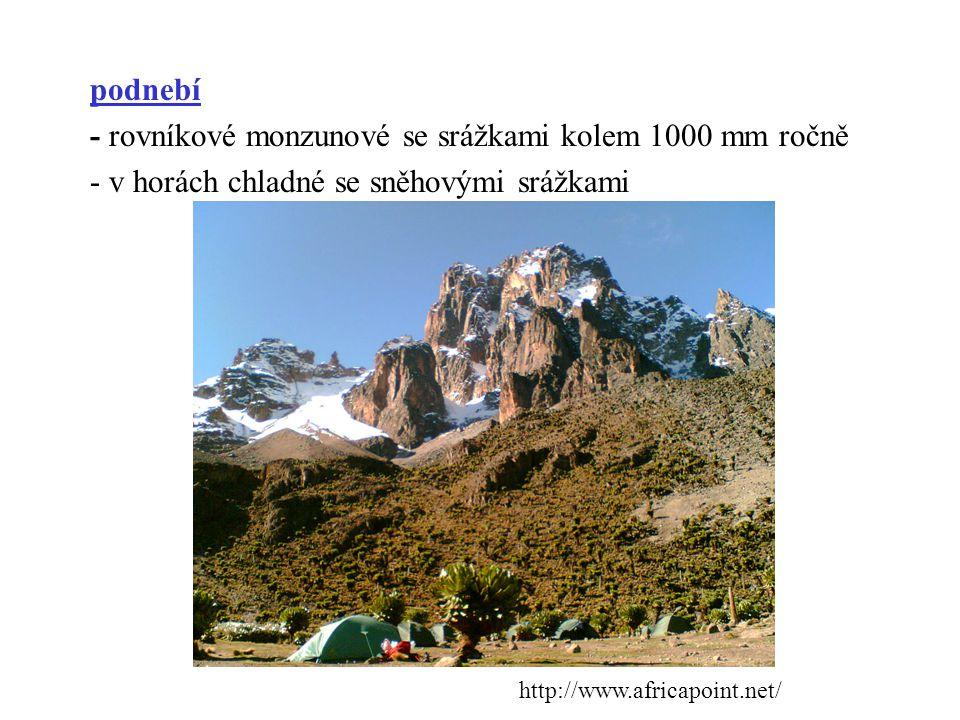 obyvatelstvo Olduvai je rokle na planině Serengeti v Tanzánii.