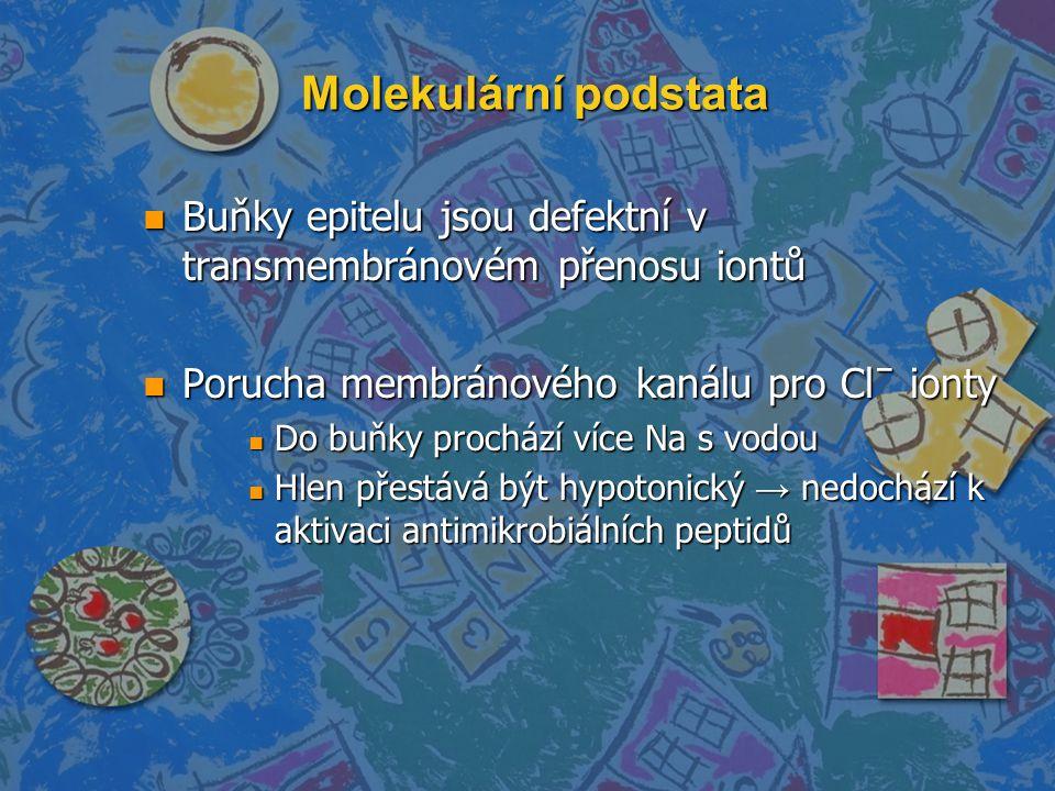 Molekulární podstata n Buňky epitelu jsou defektní v transmembránovém přenosu iontů n Porucha membránového kanálu pro Clˉ ionty n Do buňky prochází ví