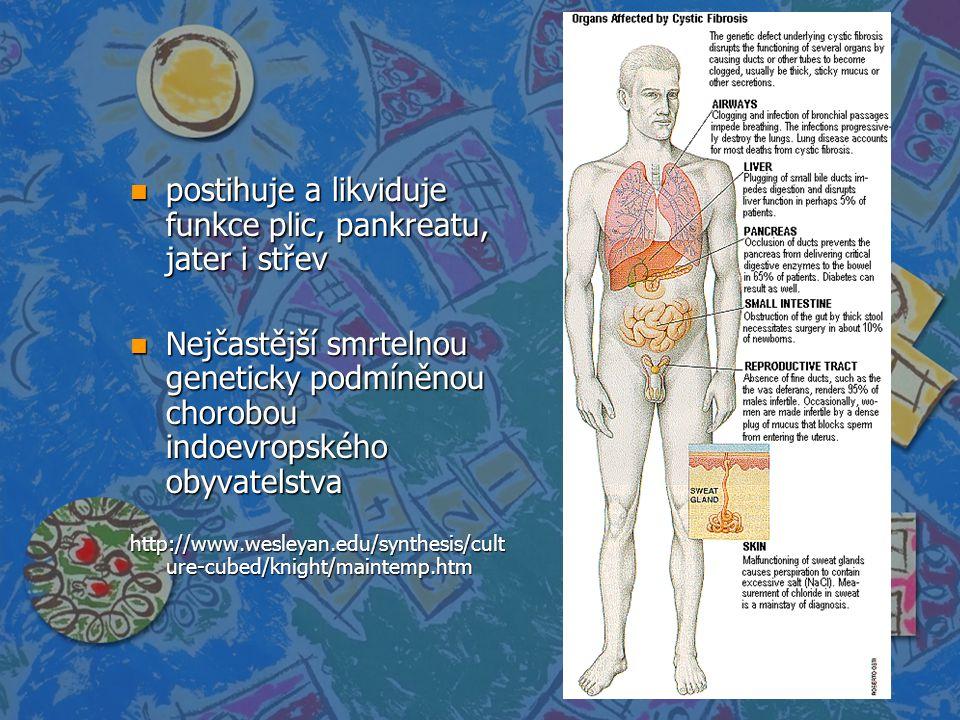 n postihuje a likviduje funkce plic, pankreatu, jater i střev n Nejčastější smrtelnou geneticky podmíněnou chorobou indoevropského obyvatelstva http:/