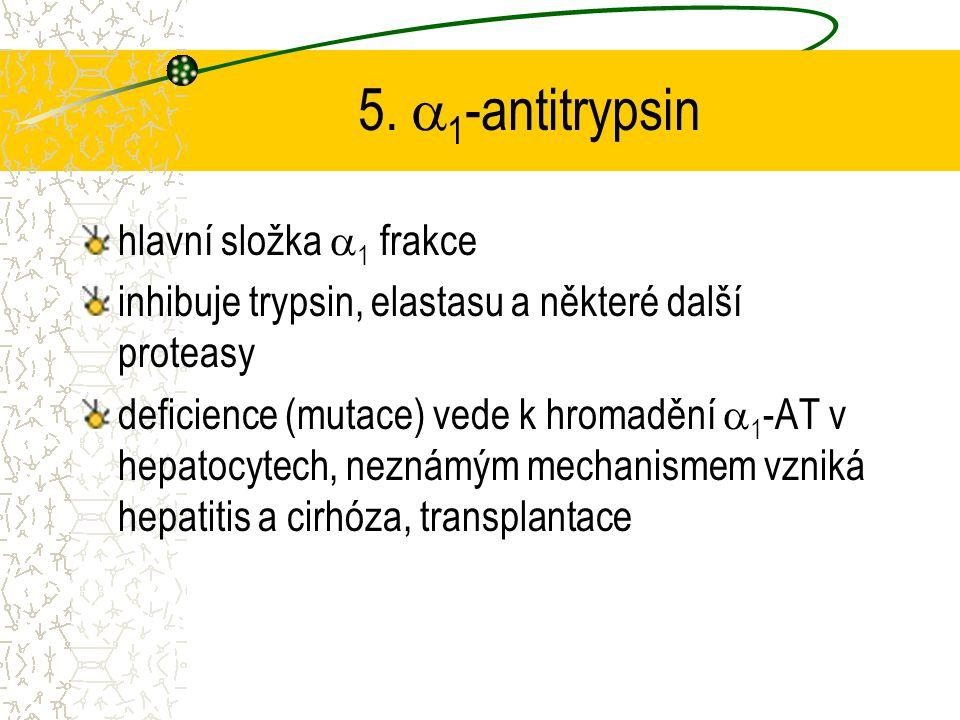 5.  1 -antitrypsin hlavní složka  1 frakce inhibuje trypsin, elastasu a některé další proteasy deficience (mutace) vede k hromadění  1 -AT v hepato