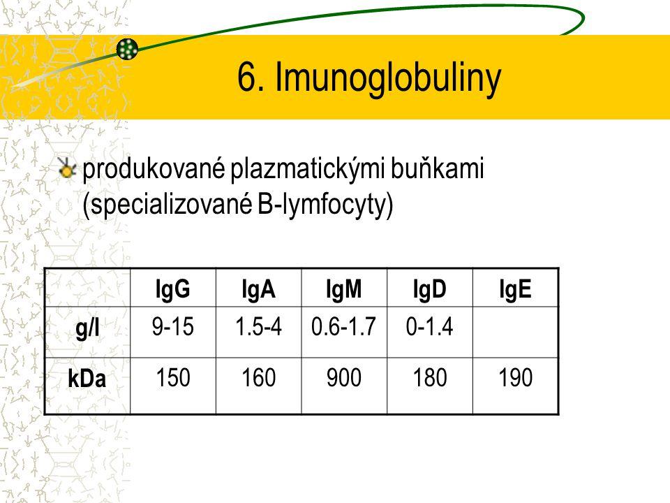 6. Imunoglobuliny produkované plazmatickými buňkami (specializované B-lymfocyty) IgGIgAIgMIgDIgE g/l 9-151.5-40.6-1.70-1.4 kDa 150160900180190