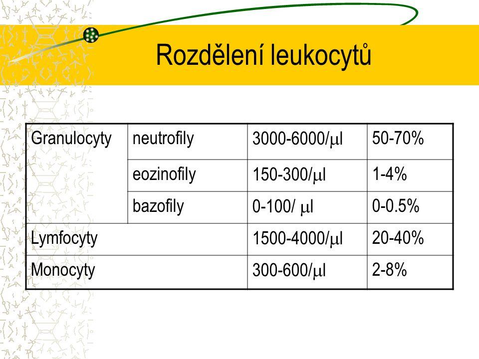 Rozdělení leukocytů Granulocytyneutrofily 3000-6000/  l 50-70% eozinofily 150-300/  l 1-4% bazofily 0-100/  l 0-0.5% Lymfocyty 1500-4000/  l 20-40