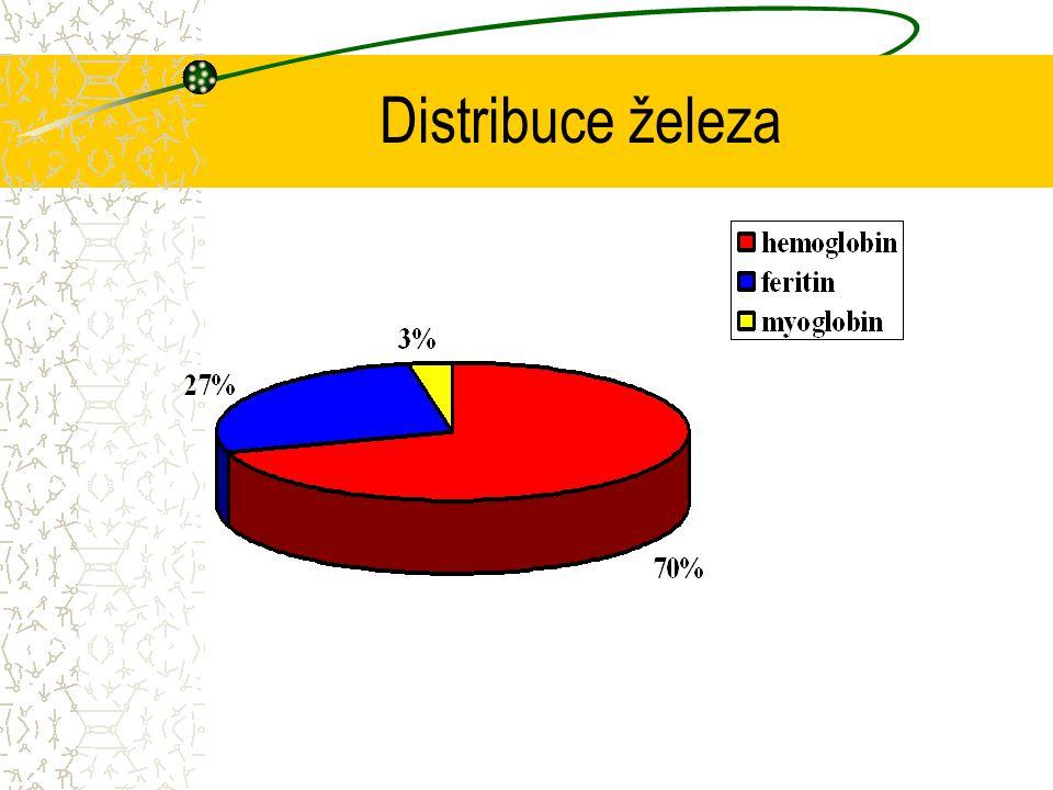 Distribuce železa