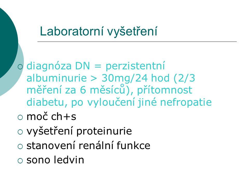 Laboratorní vyšetření  diagnóza DN = perzistentní albuminurie > 30mg/24 hod (2/3 měření za 6 měsíců), přítomnost diabetu, po vyloučení jiné nefropati