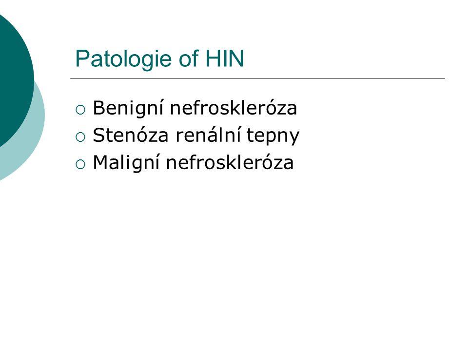 Patologie of HIN  Benigní nefroskleróza  Stenóza renální tepny  Maligní nefroskleróza