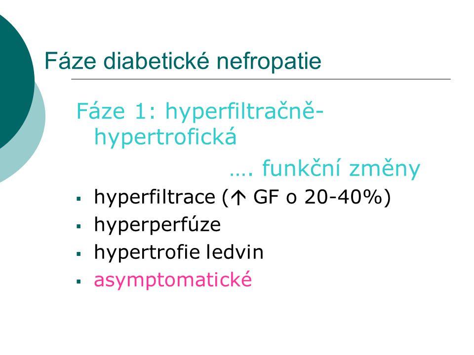 Fáze diabetické nefropatie Fáze 1: hyperfiltračně- hypertrofická …. funkční změny  hyperfiltrace (  GF o 20-40%)  hyperperfúze  hypertrofie ledvin