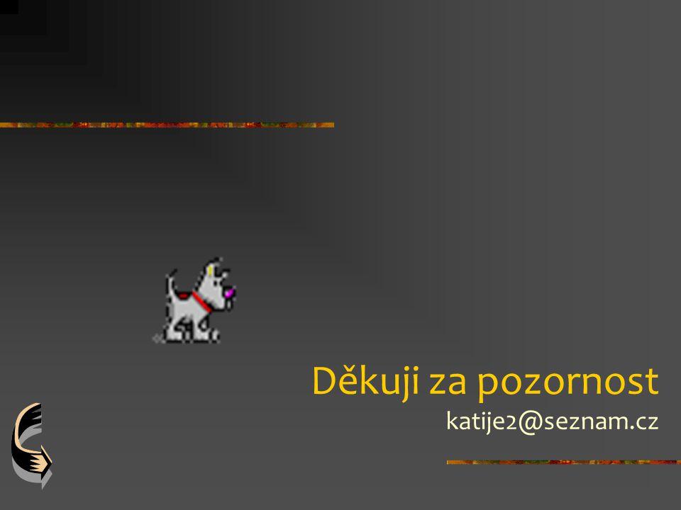 Děkuji za pozornost katije2@seznam.cz
