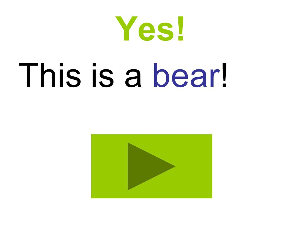 Yes! This is a bear!