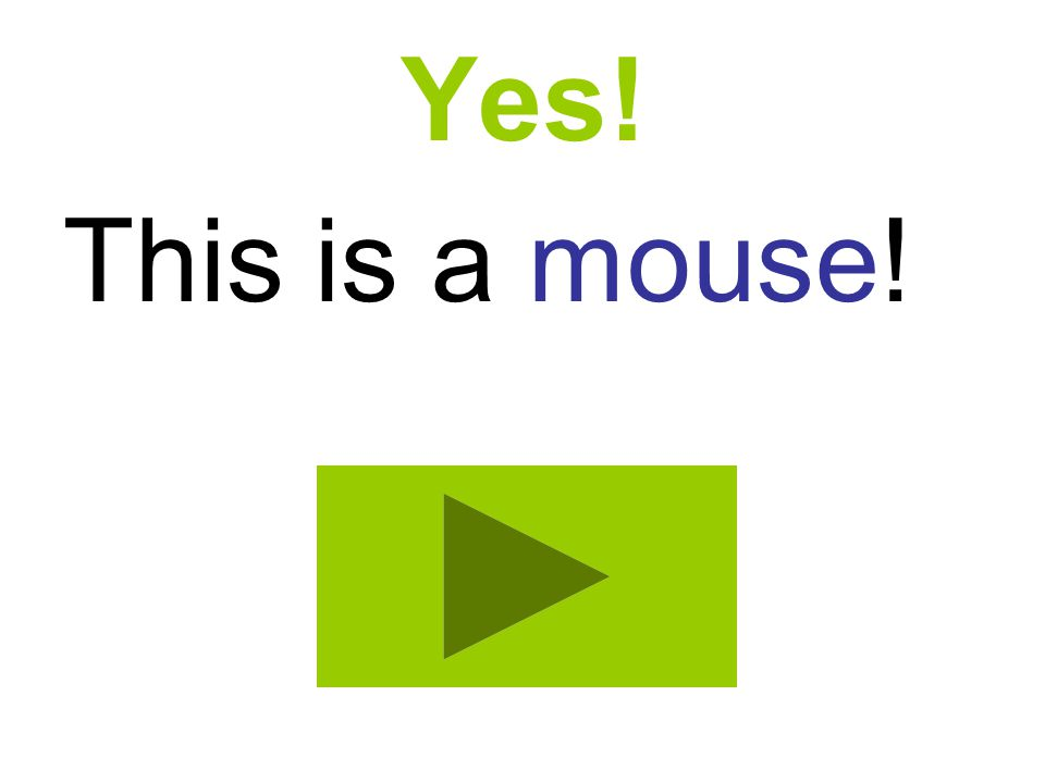Yes! This is a mouse!