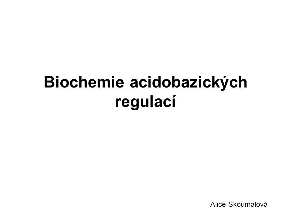 Biochemie acidobazických regulací Alice Skoumalová