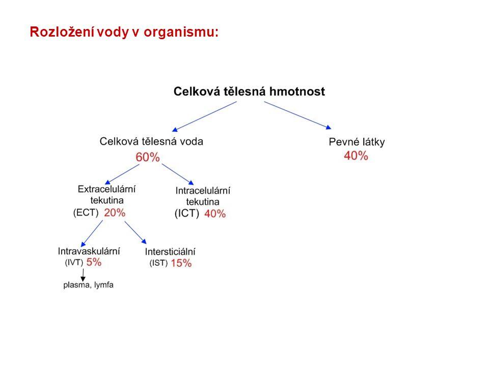 Údaje odvozené z iontogramu plasmy: AG (anion gap, aniontové okénko) (Na + + K + ) - (Cl - + HCO 3 - ) 14-18 mmol/l SID (strong ion difference, rozdíl silných iontů) ( Na + + K + ) – Cl - 42 mmol/l Rozložení aniontů a kationtů v plasmě, IST a ICT: