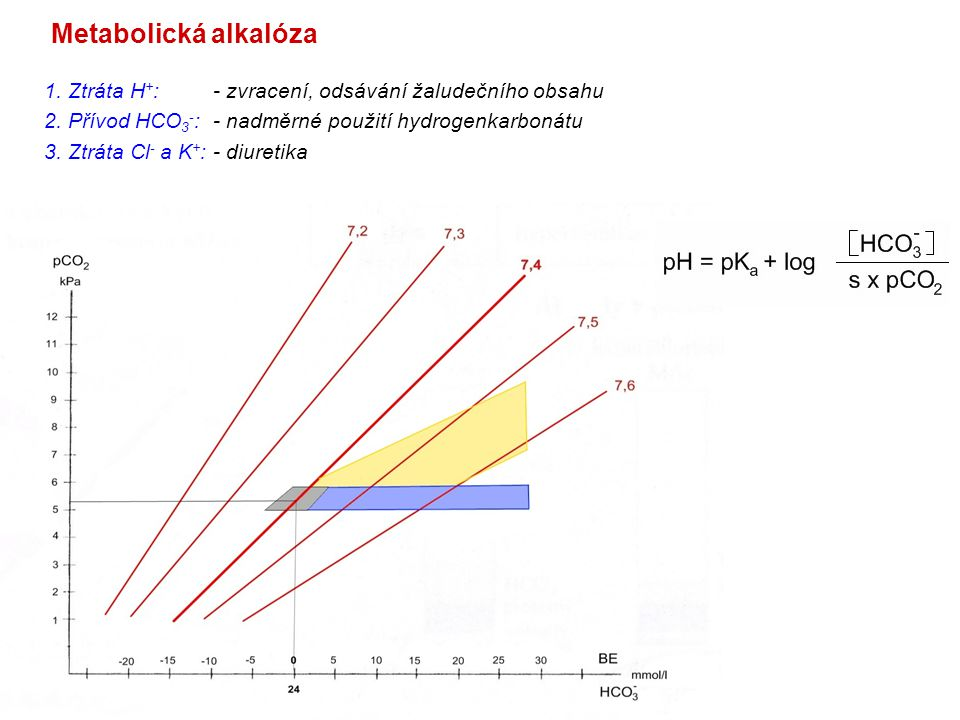 Metabolická alkalóza 1. Ztráta H + : - zvracení, odsávání žaludečního obsahu 2. Přívod HCO 3 - : - nadměrné použití hydrogenkarbonátu 3. Ztráta Cl - a