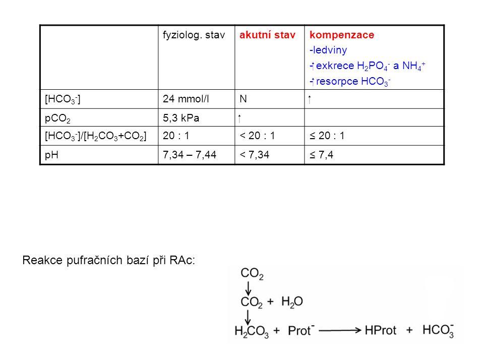 fyziolog. stavakutní stavkompenzace -ledviny - exkrece H 2 PO 4 - a NH 4 + - resorpce HCO 3 - [HCO 3 - ]24 mmol/lN pCO 2 5,3 kPa [HCO 3 - ]/[H 2 C
