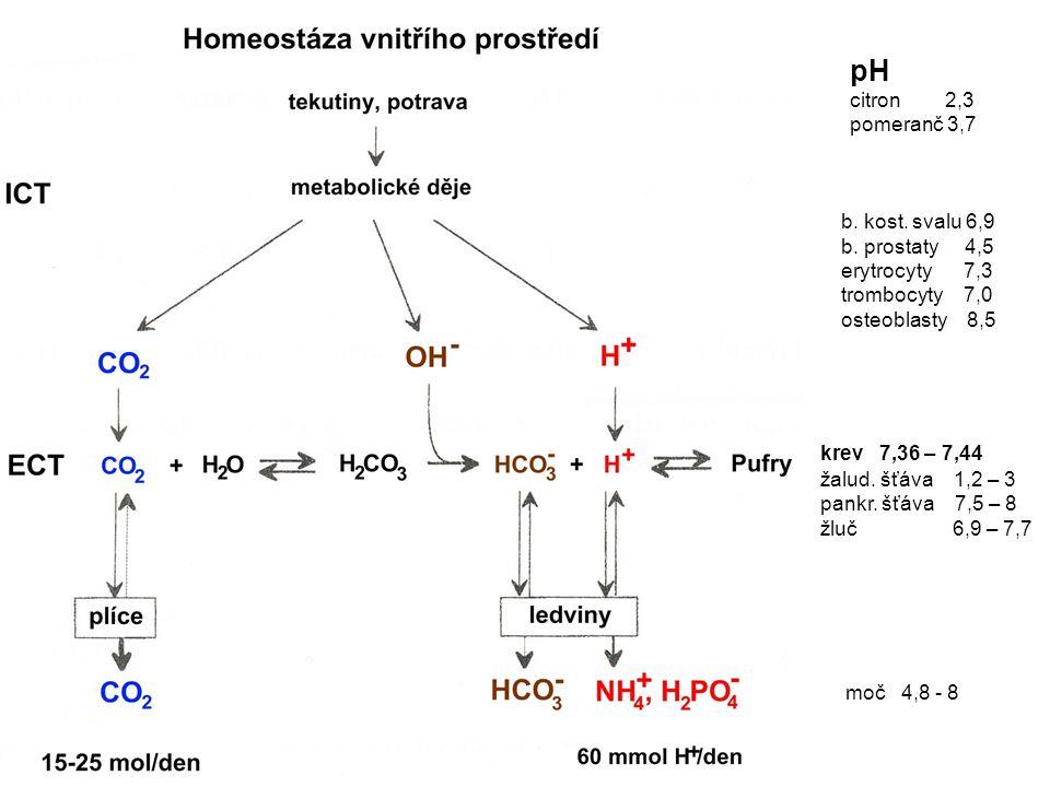pH citron 2,3 pomeranč 3,7 b. kost. svalu 6,9 b. prostaty 4,5 erytrocyty 7,3 trombocyty 7,0 osteoblasty 8,5 krev 7,36 – 7,44 žalud. šťáva 1,2 – 3 pank