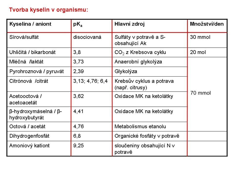 Funkce jater při udržování ABR: Metabolická acidóza: indukce tvorby glutaminu a glutaminázy v ledvinách (zvýšené vylučování NH 4 + ) Metabolická alkalóza: indukce syntézy močoviny, zvýšené vylučování HCO 3 -
