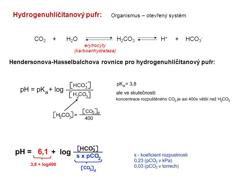 Hydrogenuhličitanový pufr: CO 2 + H 2 O H 2 CO 3 H + + HCO 3 - erytrocyty (karboanhydratasa) Organismus – otevřený systém Hendersonova-Hasselbalchova