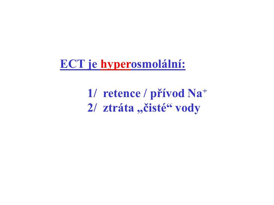 """ECT je hyperosmolální: 1/ retence / přívod Na + 2/ ztráta """"čisté"""" vody"""