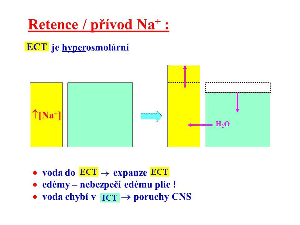  [Na +  Retence / přívod Na + : H2OH2O je hyperosmolární ECT  voda do  expanze  edémy – nebezpečí edému plic !  voda chybí v  poruchy CNS ECT I