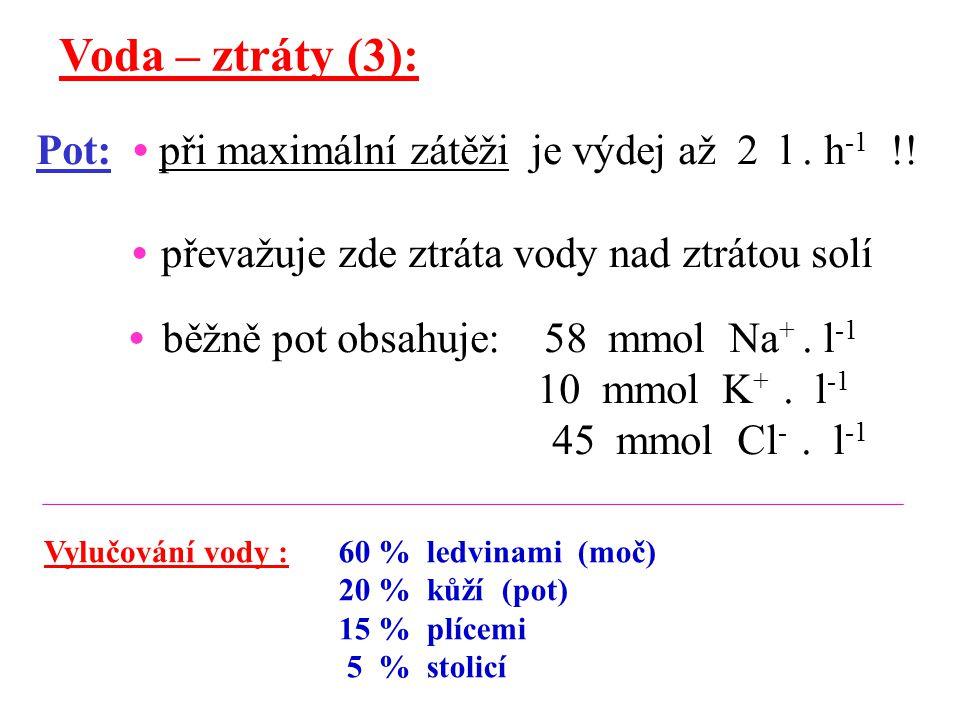 Voda – ztráty (3): Pot: při maximální zátěži je výdej až 2 l. h -1 !! převažuje zde ztráta vody nad ztrátou solí běžně pot obsahuje: 58 mmol Na +. l -