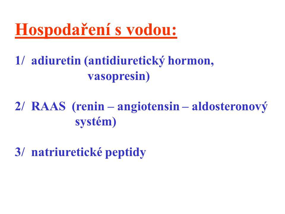 Hospodaření s vodou: 1/ adiuretin (antidiuretický hormon, vasopresin) 2/ RAAS (renin – angiotensin – aldosteronový systém) 3/ natriuretické peptidy
