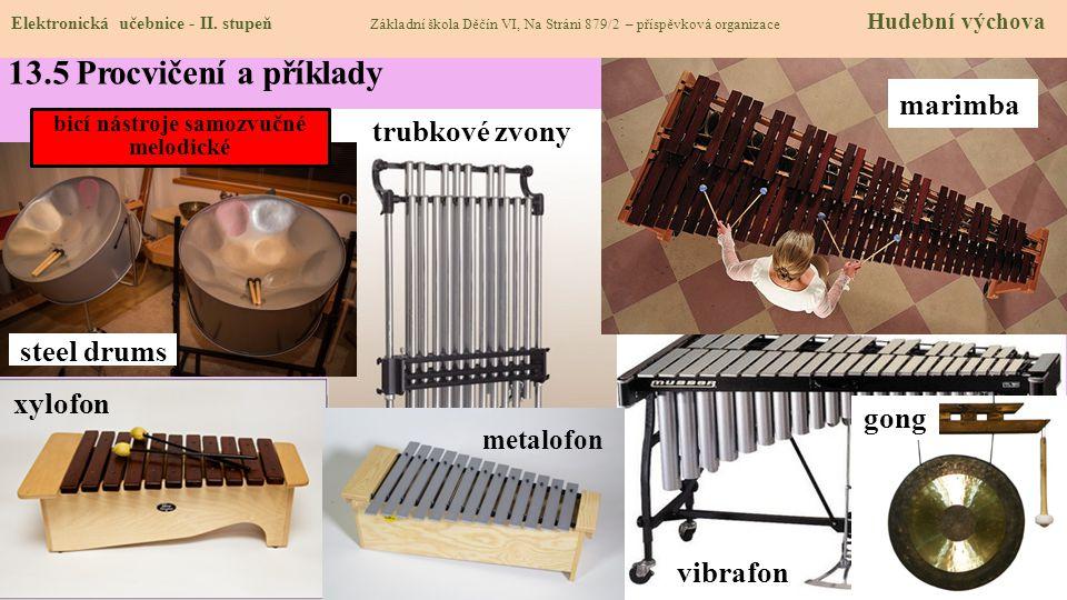 U bicích nástrojů samozvučných vzniká zvuk rozezněním celého těla nástroje. Dále se člení podle materiálu, z něhož jsou vyrobeny (dřevo, kov, sklo, ká