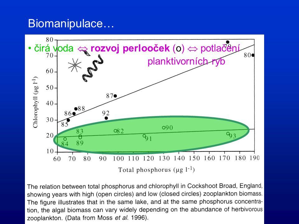 "Dilema: ""top-down"" nebo ""bottom-up""? antarktická jezera (bez ryb)  oba mechanismy!"