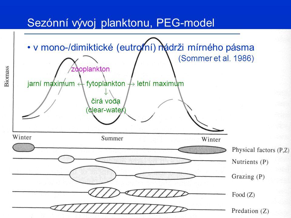Sezónní vývoj fytoplanktonu, diverzita H' – Shannonův index druhové diverzity  K-strategisti (Ceratium spp.) vysoká diverzita společenstva nezaručuje