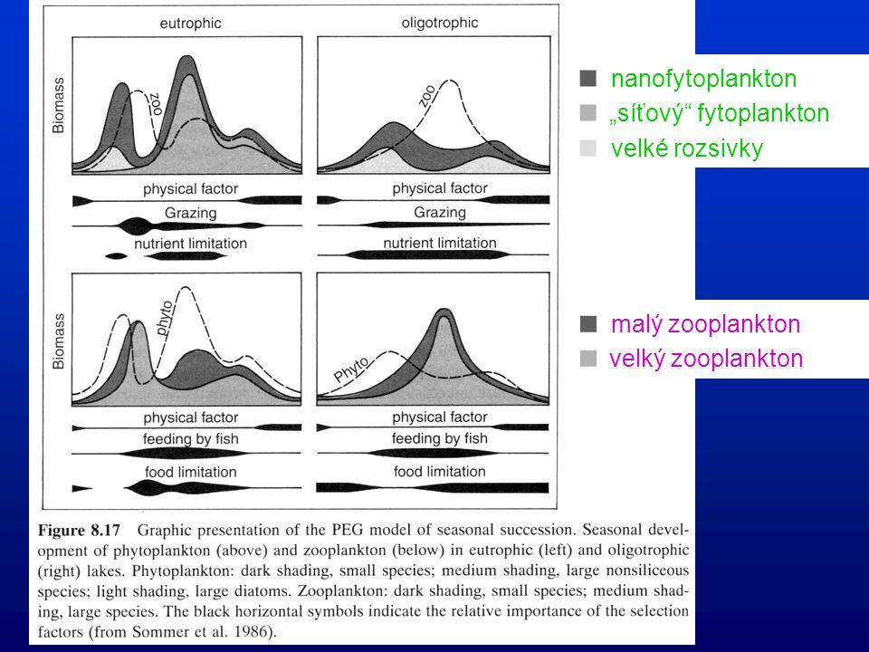 Sezónní vývoj planktonu, PEG-model v mono-/dimiktické (eutrofní) nádrži mírného pásma (Sommer et al. 1986) jarní maximum  fytoplankton  letní maximu