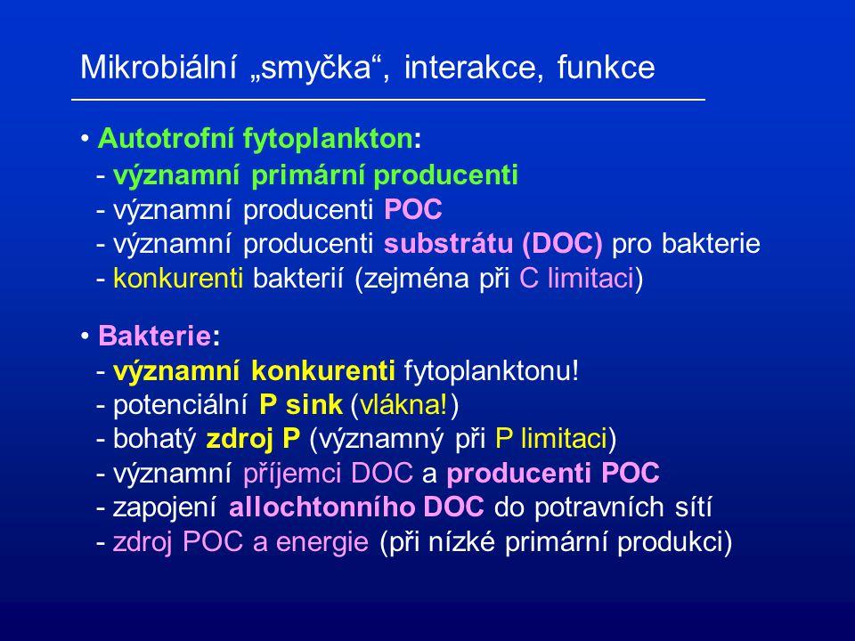 """Mikroorganismy """"smyčka"""" – sink (""""microbial loop"""" = regenerace živin pro PP) """"článek"""" – link (allochtonní DOC pro vyšší úrovně)"""