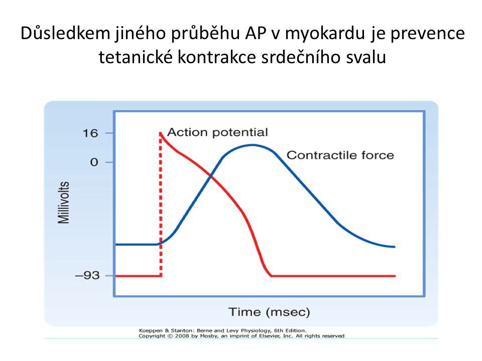 Důsledkem jiného průběhu AP v myokardu je prevence tetanické kontrakce srdečního svalu