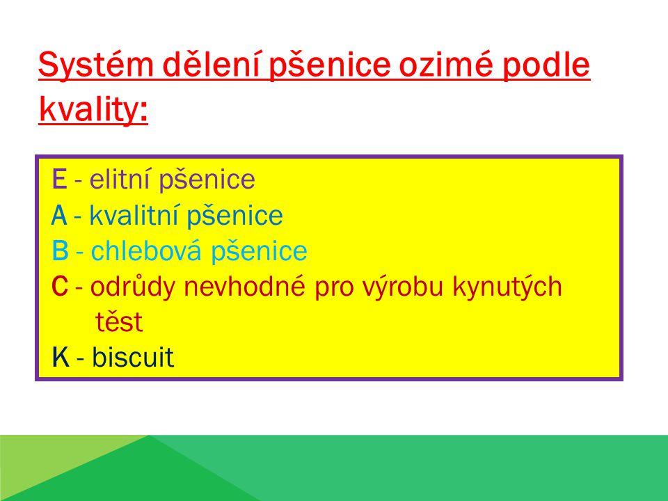 E - elitní pšenice A - kvalitní pšenice B - chlebová pšenice C - odrůdy nevhodné pro výrobu kynutých těst K - biscuit Systém dělení pšenice ozimé podl